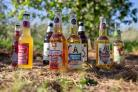 Celtic Marches creates craft cider on their farm in Bishops Frome.