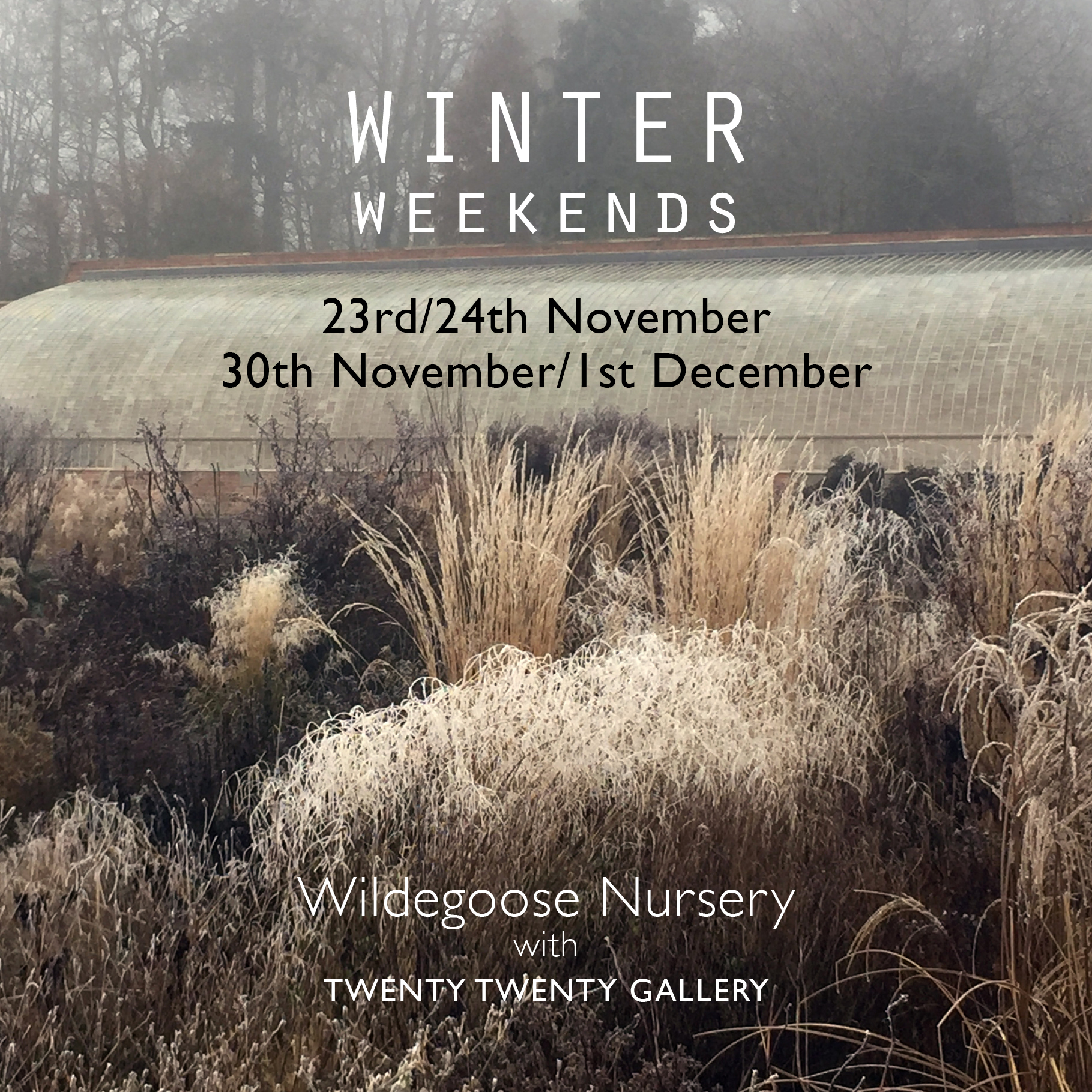 Winter Weekends at Wildegoose Nursery