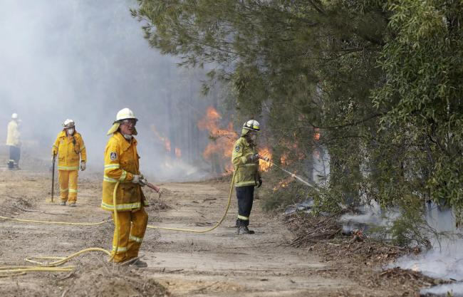 Firefighters from Herefordshire and Worcestershire could travel to Australia to help with ongoing battle to control raging wildfires. Photo: AP Photo/Rick Rycroft