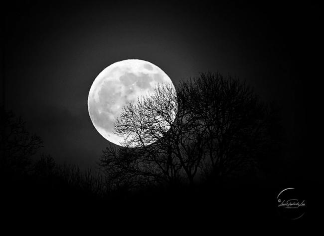 Wolf moon over the Powys-Herefordshire border by Laura Shepherd