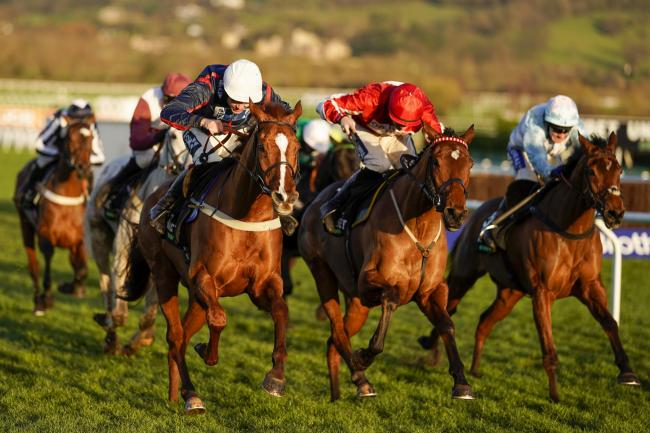 Song For Someone (left) on his way to winning International Hurdle at Cheltenham races on Saturday. Trainer Tom Symonds also had a win at Hereford Racecourse on the same day. Picture: Alan Crowhurst/Getty Images
