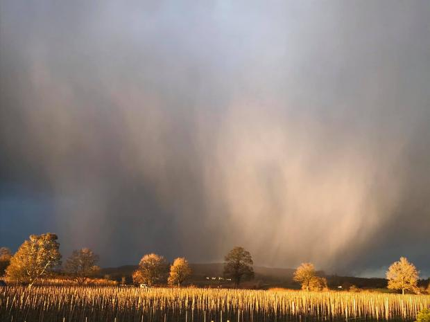 Hereford Times: Jaroslav Štummer took this picture of an approaching snow shower in Herefordshire today
