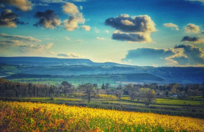 Looking towards Hay Bluff from just outside of Weobley. Picture: Tom Pennington