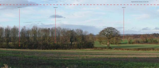 Hereford Times: The location of the proposed site as seen from road to Westhide, adjacent to Ashgrove, look north-east. Picture: The Landmark Practice/Herefordshire Council