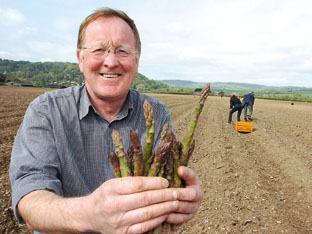 John Chinn, who grows 850 acres of asparagus in Ross. 101810-3.