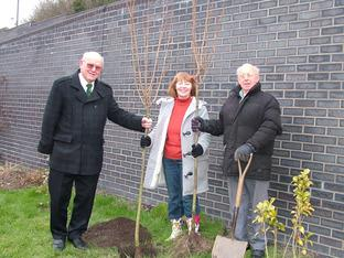 Planting cherry trees are Knighton mayor Coun Ken Harris and Platform pals Shauna Davies and Charlie Dawe.