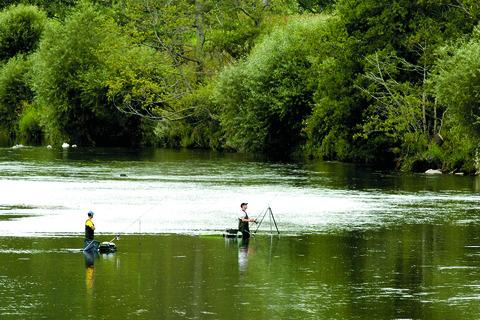New laws mean Wye salmon must be released unharmed