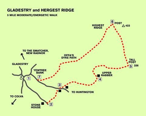 Gladestry and Hergest Ridge: Five-mile moderate/energetic walk. Bridle paths, no stiles. One stiff climb. Country lane, field and open springy-turfed moorland with spectacular views. Map: OS 201, Knighton and Presteigne. Compass.