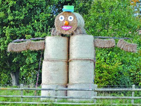 Have you seen the Herefordshire straw man?
