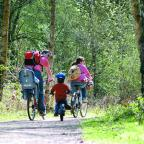 Hereford Times: A wheelie great day out in the forest at Pedalabikeaway