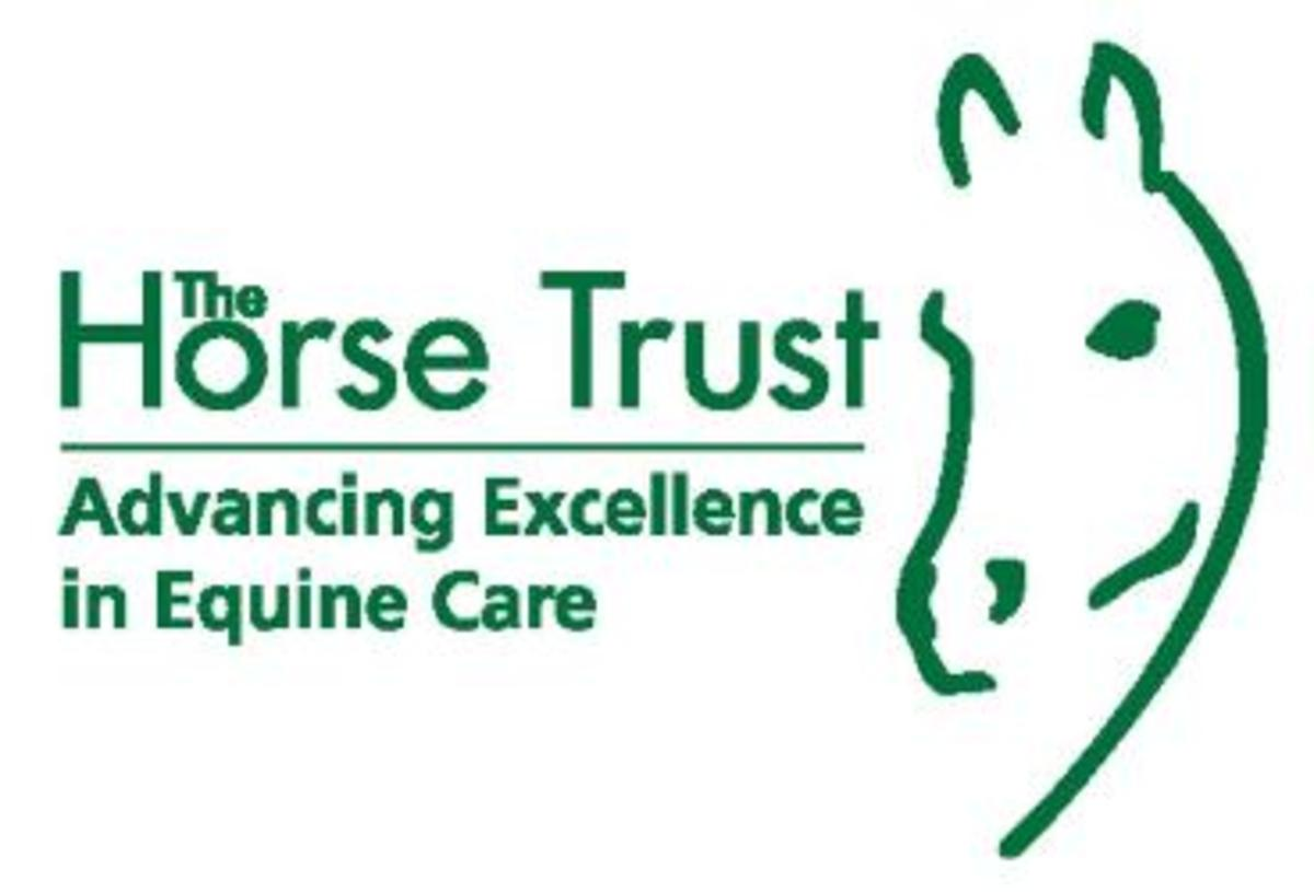 Equestrian, The Horse Trust sponsorship scheme, supports retired and rescued horses, ponies and donkeys at Home of Rest