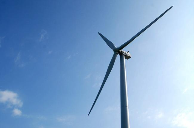Campaigners complete environmental assessment for Herefordshire wind farm