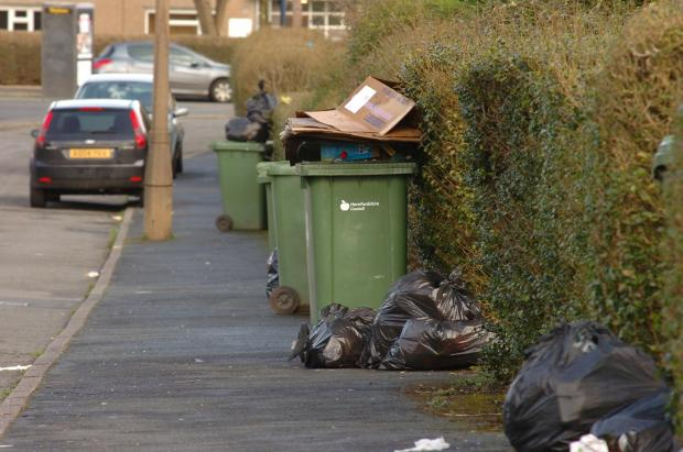 Hereford Times: Fortnightly bin collections will be offset by black wheelie bins according to councillor Harry Bramer. This photo shows bins awaiting collection in Newton Farm. Photo by James Maggs. (4379584)