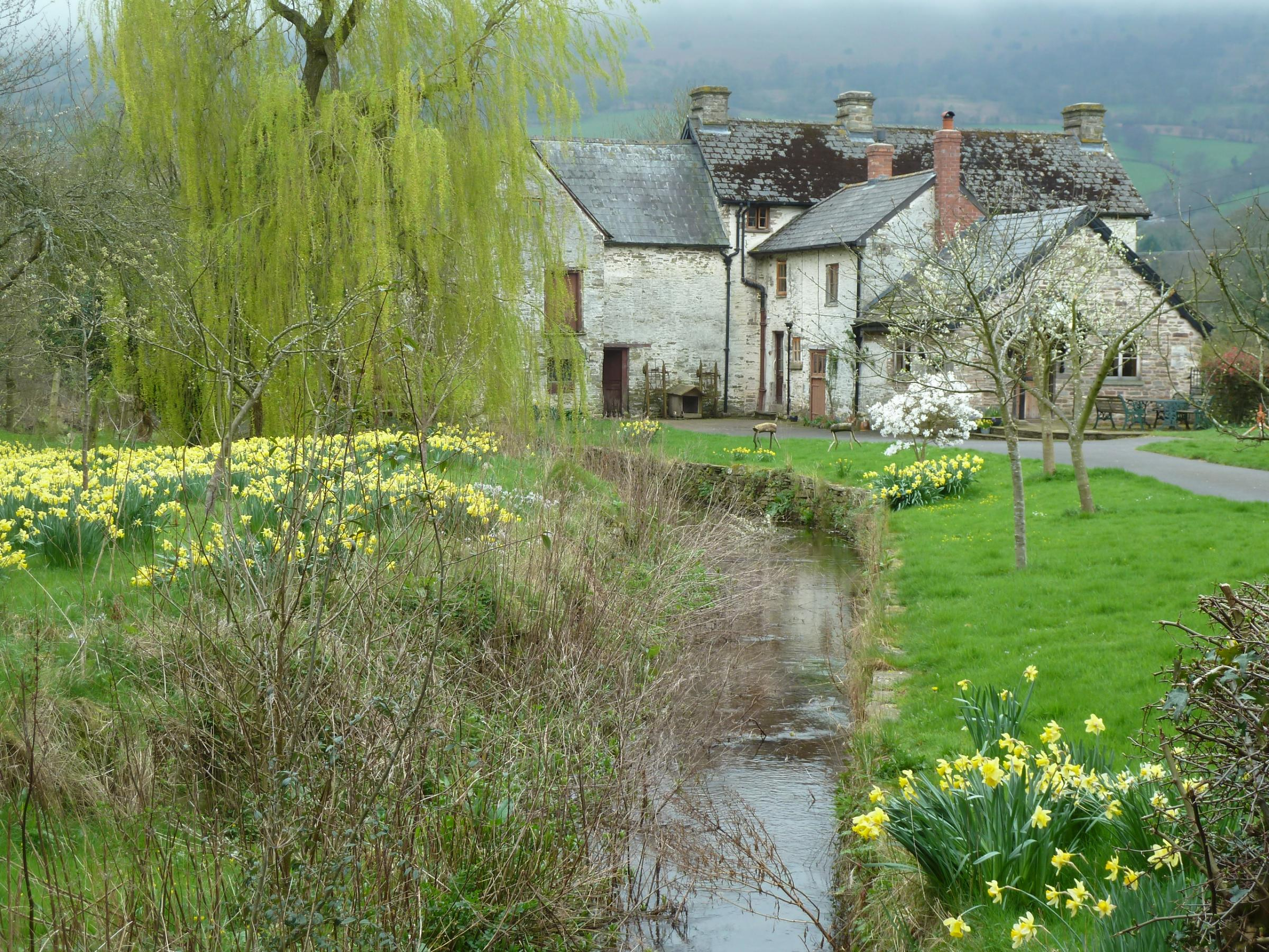 Clodock Mill, near Longtown, is one of the many watermills open to the public this weekend. By Alan Stoyel.