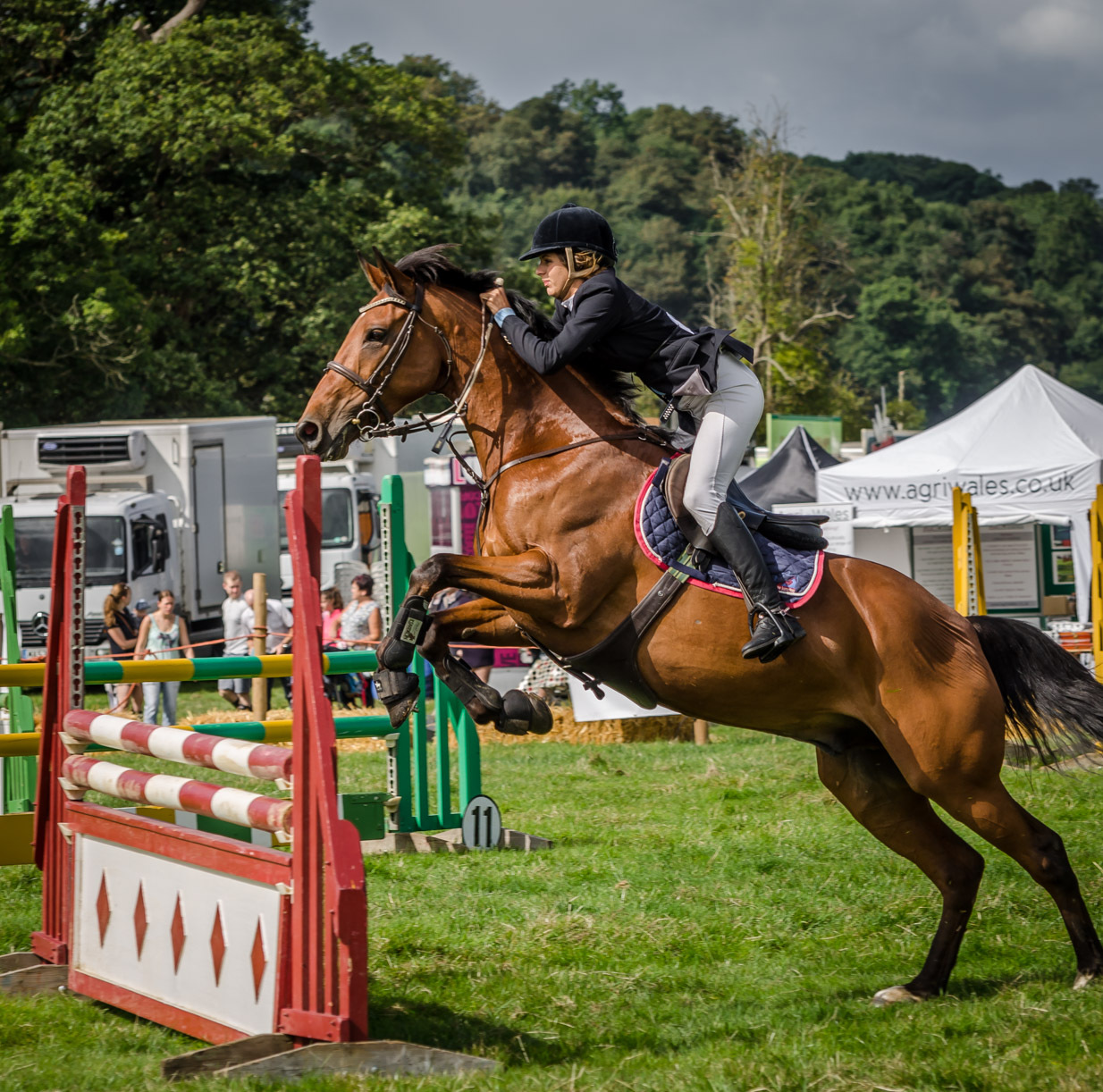 "Herefordshire Country Fair hailed a ""great success"""