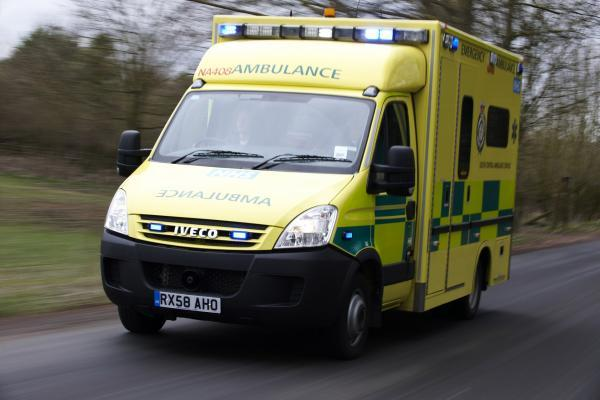 A horse rider was taken to hospital after her horse fell on her.