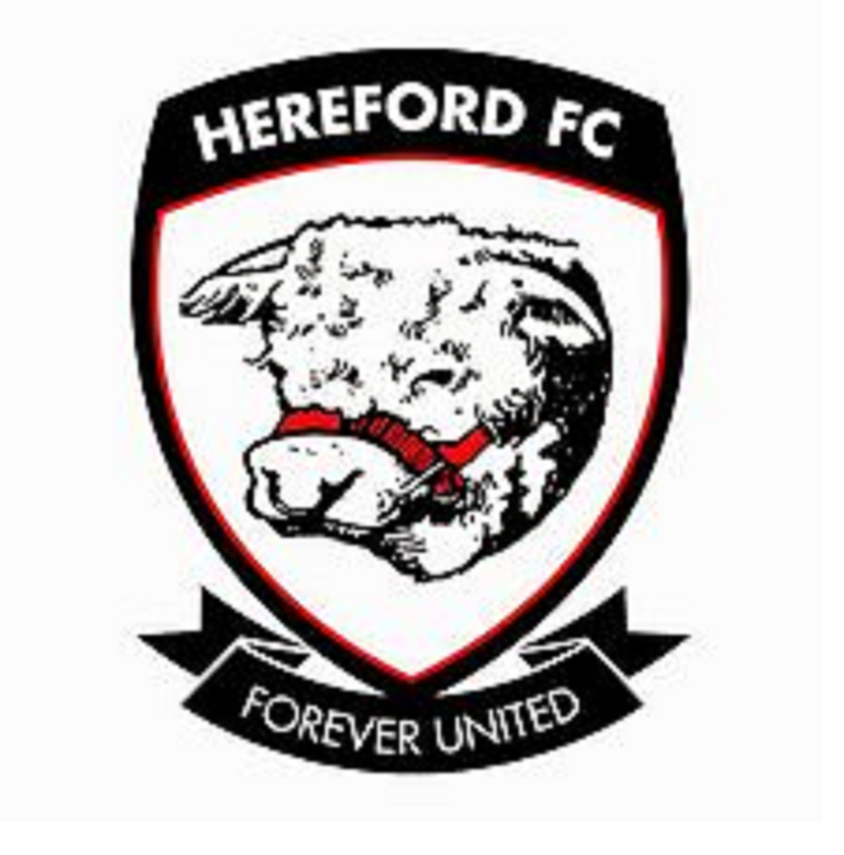 Two new directors have been appointed at Hereford FC