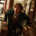 Hereford Times: Eddie Redmayne unveils new trailer for Fantastic Beasts And Where To Find Them