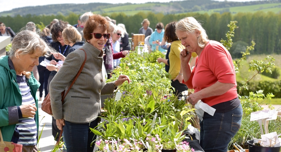 St Michael's Hospice invites you to the second annual plant fair