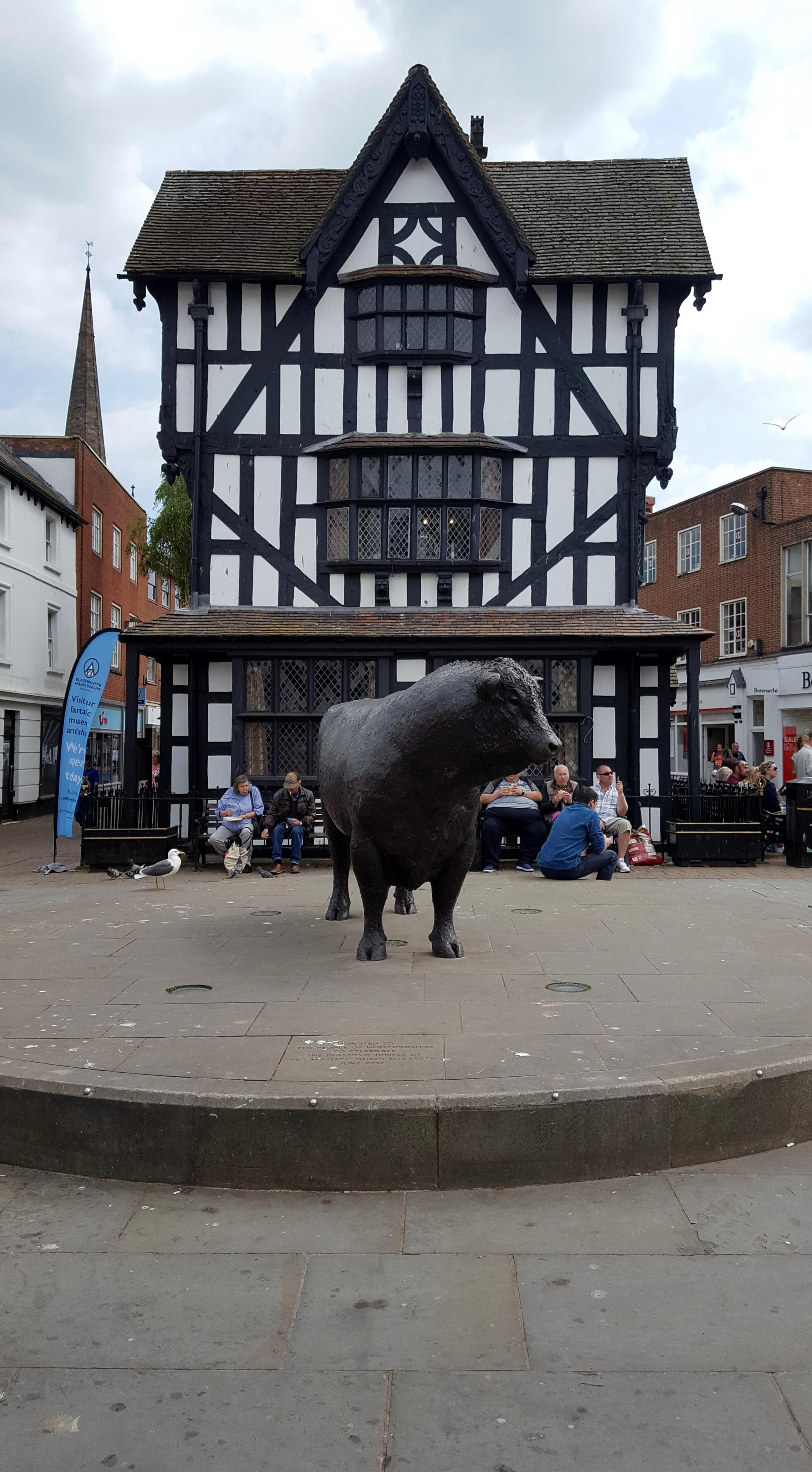 Seagull droppings next to the Hereford bull statue in Hereford's High Town
