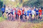 The runners line up for the start of the fourth race in the Herefordshire Cross Country League at Monkhall Farm.