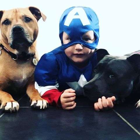 Superhero Mason with his pet pooches.