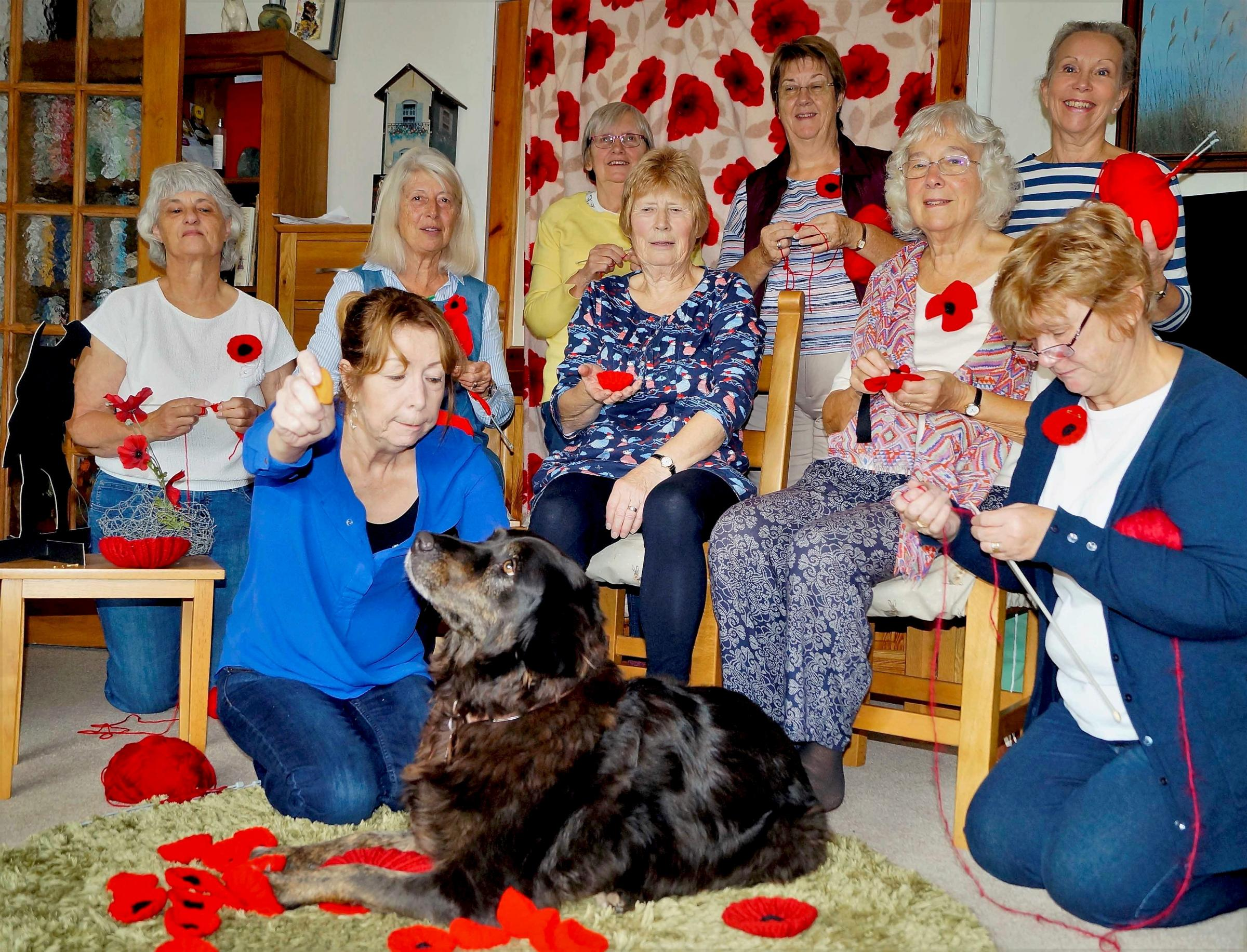 Poppies will be everywhere as the Withington Crafts and Knitting Group contribute to the exhibition