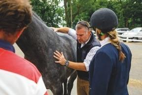 Tim Bradford is one of the country's leading vet physios