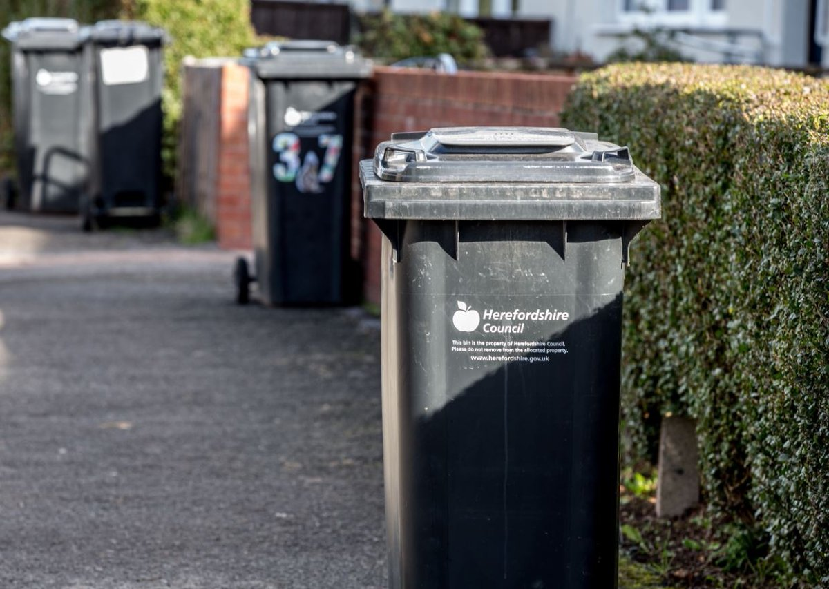 Bin collection delays today