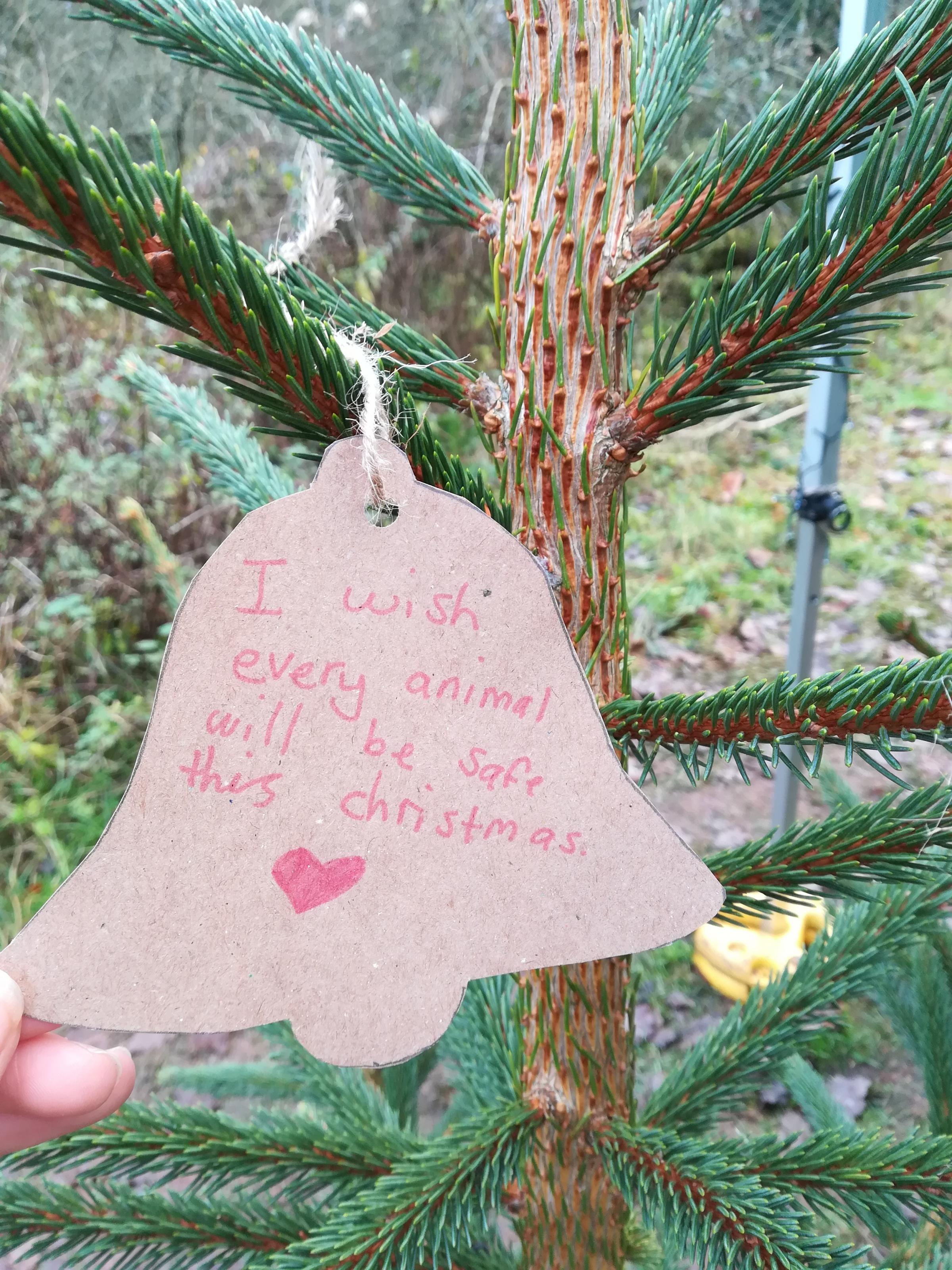 """I wish that every animal will be safe this Christmas""  was written on this message card for the Wishing Tree"