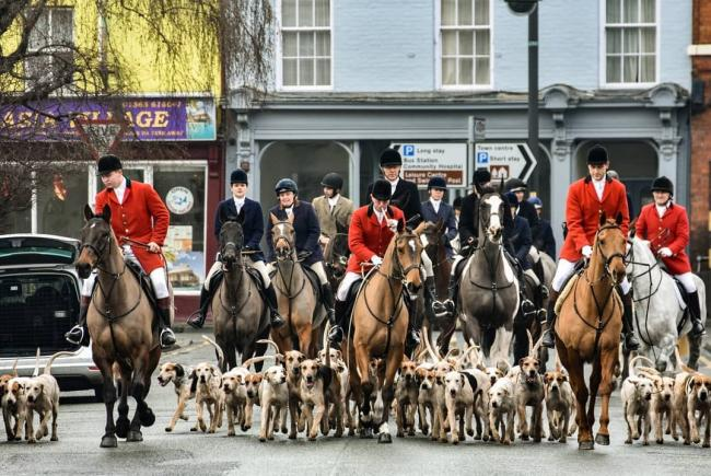The North Herefordshire Hunt in Leominster yesterday. Photo: Jim Wood.